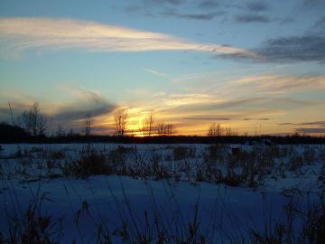7 January 2008 Dusk